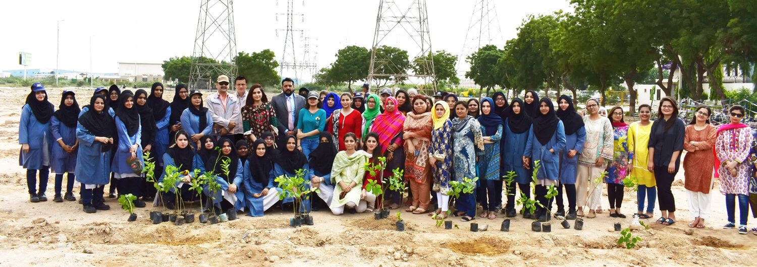 IMC's Women Employees Participate in Tree Plantation Campaign